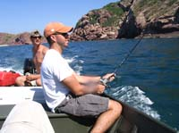 trolling for sailfish in mazatlan